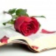 حنين الورد